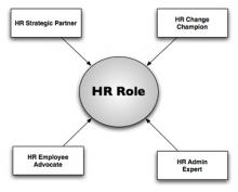 HR Function Role in Organization