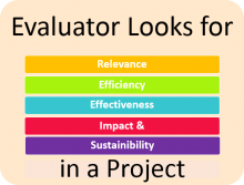 Evaluator Requirements in Project